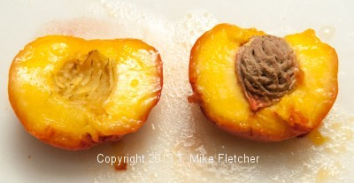 Cut peach with pit