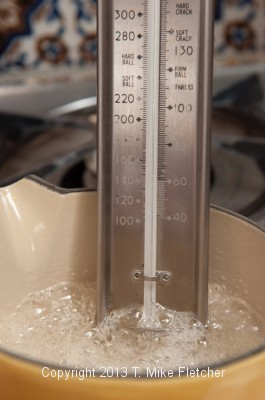 Thermometer in pan
