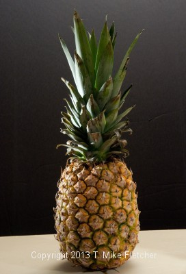 """Pineapple - you can see the """"kicker"""" light on the left side"""