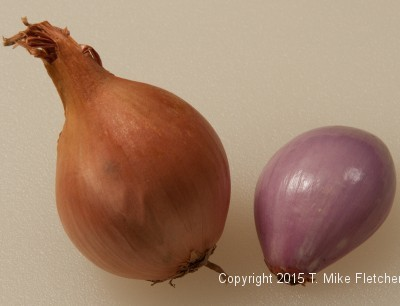 Peeled and unpeeled shallots for Seafood Crepes