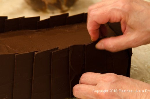 Placing chocolate panels on Chocolate Raspberry Gateau