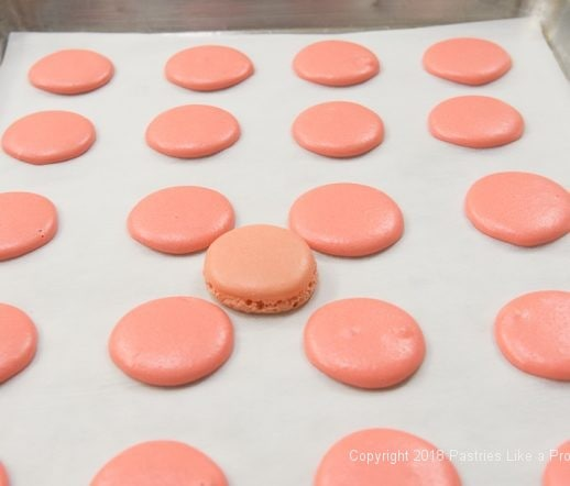Baked and unbaked French Macaron on tray