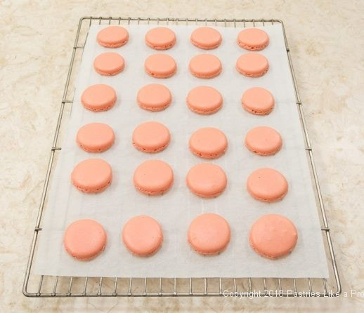 French Macarons cooling on parchment